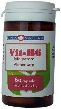 vit-b6 60 capsule, pilloliere